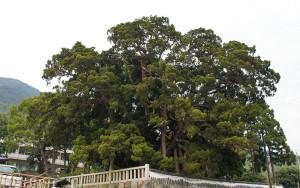 小豆島,宝生院