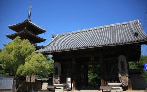 志度寺,東讃,神社