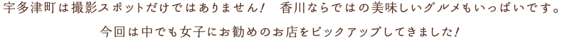 宇多津町は撮影スポットだけではありません!香川ならではの美味しいグルメもいっぱいです。今回は仲でも女子にお勧めのお店をピックアップしてきました。